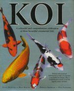 Koi - A Colourful Celebration